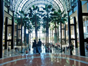 The atrium of Winter Gardens with its tall palm trees