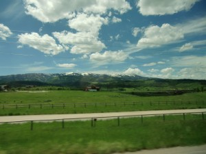 The scenery on the way to Jackson, Wyoming is lush and green.
