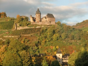 We cruise by one of the fifteen castles along the Rhine, taking us back to medieval times.