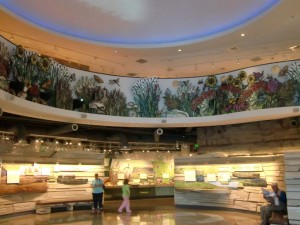 The Flint Hills Discovery Center holds many exhibits about Kansas natural history, Indian life and history.