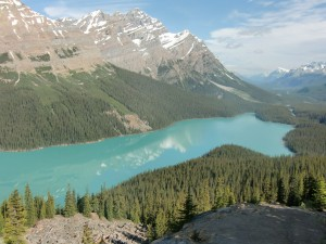 Lake Peyto is so unusually beautiful that it hardly seems real.