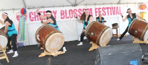 Festivals35