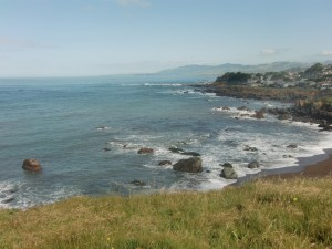The coastline and bluffs at Cambria form this beautiful scene.