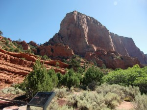 Monoliths of reddish iron-stained rock dominate the canyon.