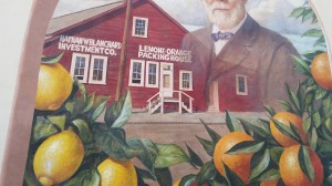 This is a  mural  depicting Santa Paula as the citrus capitol of the world.