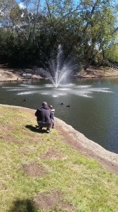 My grandson points out the ducks to my great grand-son.