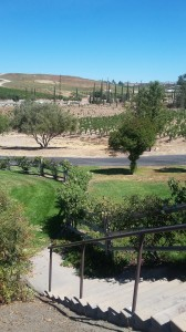 Vineyards cover the Temecula Wine Country.