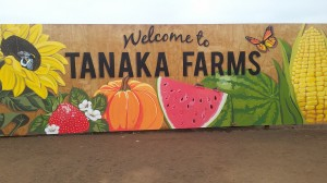 A colorful sign welcomes us to Tanaka Farms.