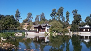 The authentic Chinese garden is the newest addition to the Huntington.